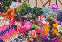 Celebrations : *Cinco de Mayo* / Der mexikansiche Feiertag Cinco de Mayo als Party Thema, mit Dekorationsideen, Getränkevorschlägen und Essensanregungen.