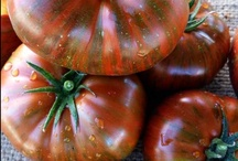 Farmers Market / buying organic is good for you, farmers, and the planet