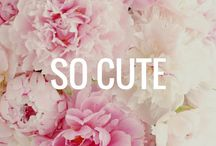 """SO CUTE  / All the things that give me """"heart eyes"""""""