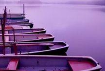 Purple / by Jessica Lynn Morgan