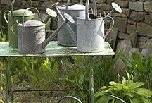 Watering cans / by Lorrie Pope