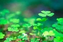 Get the Luck on Your Side. / All things green to help you have the best and luckiest Saint Patrick's Day possible.  / by ShoeMall