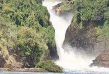 Nature / Nature in Africa