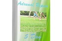 Adrenal Fatigue / Pins that supports the work done in my Adrenal Repair Online Health Class: http://intuition-physician.myshopify.com/products/adrenal-repair-bootcamp-dec-7-11-2015