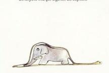 C'era 1 volta 1 Elefante