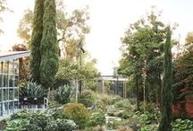 Country House / Inspiration and ideas for the house and gardens on our block of land in Chewton, Victoria.
