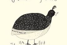 bird illustrations / by Joom K