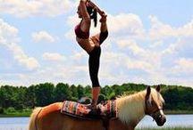 dance, cheer and gymnastics are life