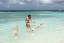 Best of Aruba