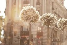 wanderlust // france / paris and other places my heart would like to be. / by Jessie Rodger