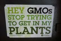 Non-GMO Labeling / by Down to Earth Organic & Natural