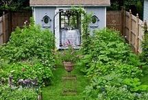 Garden of the VEGETABLE Variety