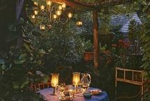 Garden Water and Lights