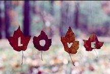 seasons. / seasonal inspirations. / by Jessie Rodger
