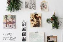 Tis the Season / Inspiration for the holidays