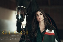 Horses + Gucci / www.lacavalieremasquee.com is Partner of the GUCCI Paris Masters