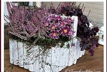 Songbird: DECOR projects / Home decor ideas for everyday and for special holidays. Here you'll find mantel, vignettes, table settings and centerpiece ideas. All done in my own home and as seen on my blog Songbird. http://www.songbirdblog.com / by Songbird Blog