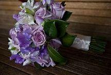 Wedding Stuff / by Cathy Lewandowski