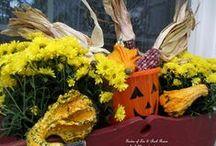 Halloween Ideas / All things Halloween!