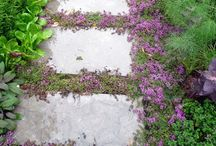 Gardens / Gardens are such natural pieces of art, what's not to love? Inspirational pics.