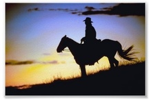 ~ COWBOY'S - <3 /    (PLEASE RE-PIN ONLY - THANK YOU) / by Denise Cottom