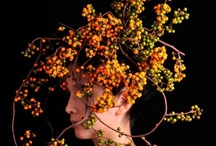 Flora  / by Meredith Ekstedt