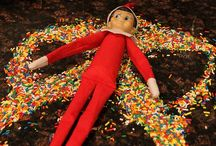 what the elf... / Elf on the Shelf / by Mary Beth Burrell