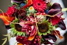 Weddings / by Kaleigh Morris