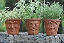 Jo, Jo, how does your garden grow? / by Johanna Vining