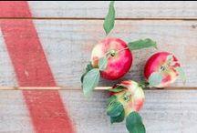 Our Fruit / Premium Australian apples grown in Batlow, NSW.