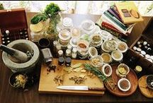 Herbs / The magick of herbs in the garden and kitchen, in healing and spell work.