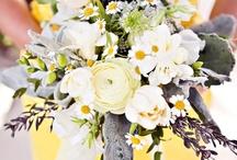 Wedding Planning / Wedding ideas :)