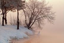 Wintertime / Wintertime beauty