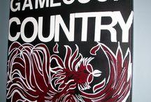 Carolina Gamecocks