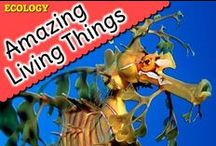 Amazing Living Things / I am continually astounded by the form, function, and behavior of living things.