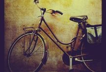 Trikes And Bikes