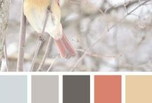 Nature Inspired Color Pallettes