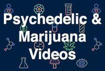 Psychedelic and Marijuana Videos / A comprehensive and up-to-date archive of visual files related to psychedelic and medical marijuana research.