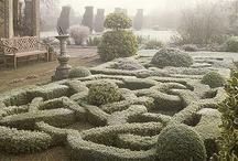 Knot Garden / Amazing garden art, constructed in the Italian Renaissance. Fantastic and complex designs.