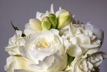WEDDING FLOWERS / Inspiration for our wedding party flowers