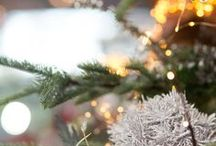 Christmastide / Fresh greens, foraged finds, and glowing lights inspire our natural holiday decor.
