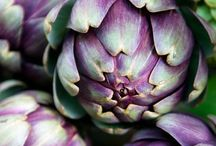 artichoke / by Sam Guzman