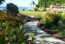 "Classic: Landscape projects (classicnursery.com portfolio) / This is a range of pictures representing a variety of outdoor projects that we have designed and installed all over the Puget Sound region. Here you can review our hand crafted work with plants, soils and stone as well as carefully built carpentry, water features and the placement of garden art. Thank you! You can see more of our work at our website...classicnursery.com...and please ""like"" us at our Facebook page: http://www.facebook.com/Classicnurseryandlandscape"