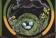 Spring Equinox / Eostre / by Susan Betke