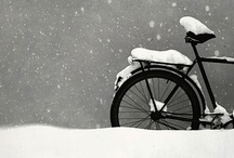 Bicycle & Icicle / by curious tangles