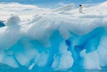 BUCKET LIST Antarctica / One in a life time I want to visit Antarctica!