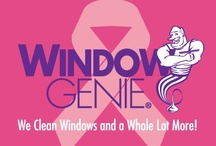 Windows 4 Wishes / Windows 4 Wishes is Window Genie's give back program that encourages all owners to reach out to their local community and make a difference.