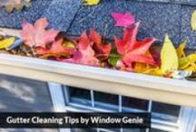 gutter clean-out & protection / Having regular gutter cleaning on your home is the most affordable way to prevent flooding and other damages. Gutter systems move water away from your home. When the flow is compromised, water will take the past of least resistance which is oftentimes inside your home. This can lead to an internal mold problem and damage ceilings and walls greatly.