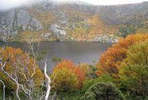 My Travels to...  Australia / http://www.claudiumdiewelt.de/category/australien/  Australian-Tagebuch. German travel blog.  To me, Tasmania is the best of Australia!