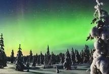 I Want to See The Northern Light